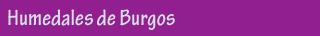 Las aves de Burgos