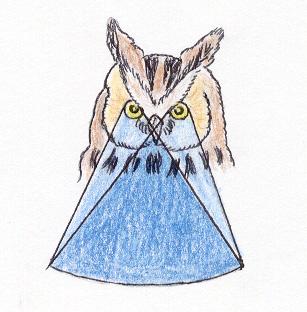 Área de visión (aves nocturnas)